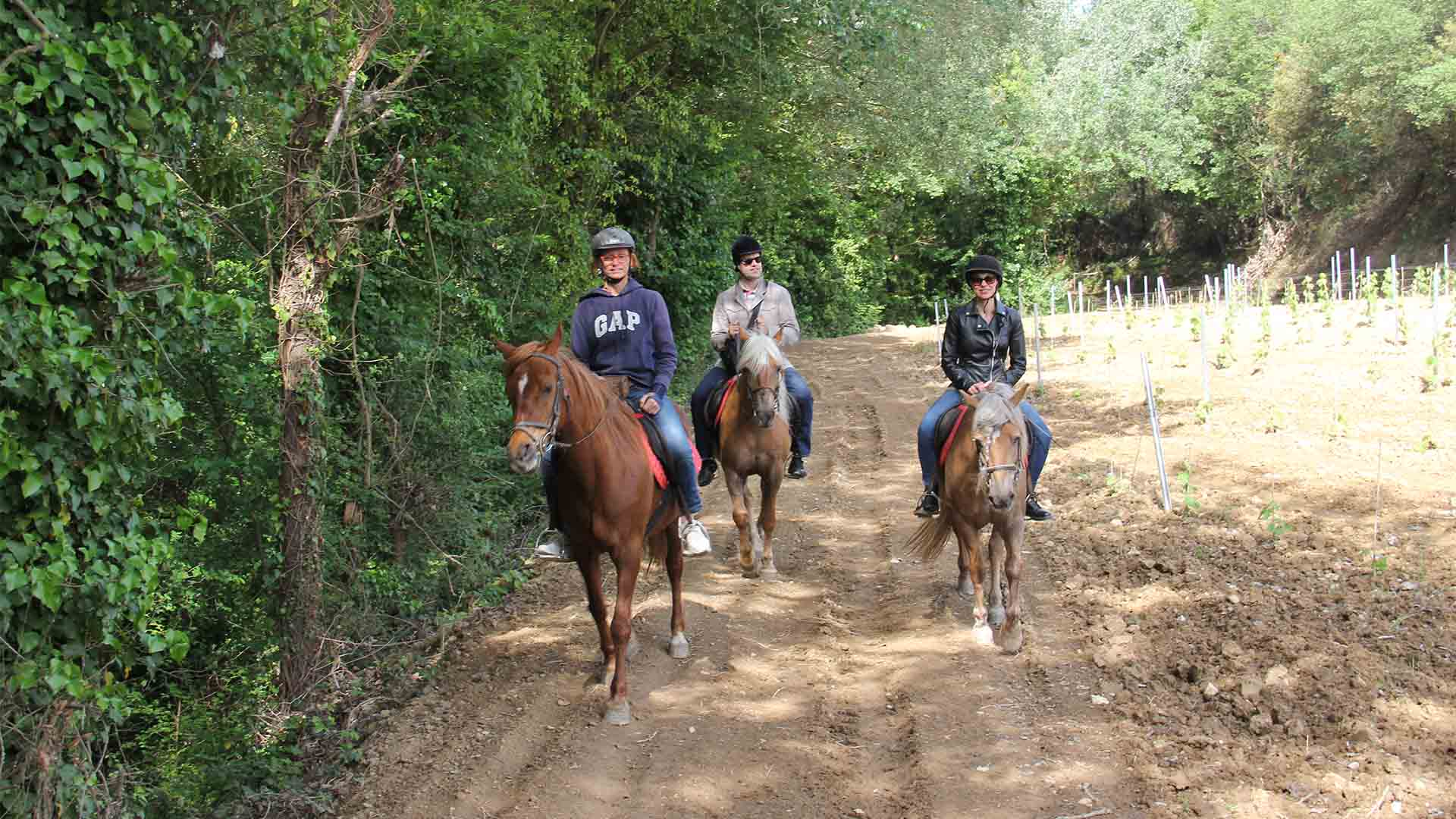 HORSEBACK RIDE & WINE TOUR PENEDÉS