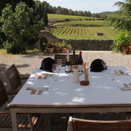 Penedés_BCNbyRoad-wine-tour-gourmet