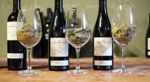 WineTour_WineTasting_Priorat