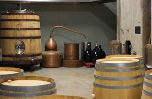 WineCellar_WineTour_Barrels_Priorat
