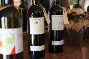 BarcelonaByRoad_WineTour_Priorat (91)