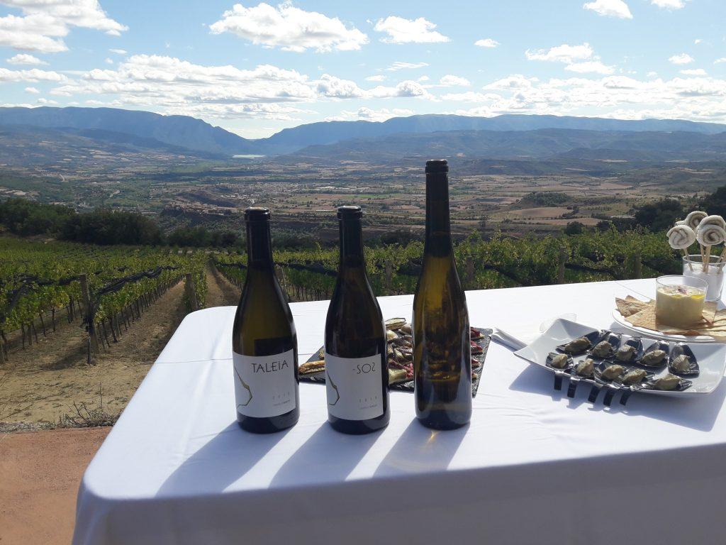Wine Lovers, Wine Tour, Wine tasting, Lifestyle